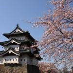 桜 弘前公園